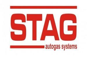 logo_stag_логотип-стаг-Польша